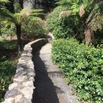National Rhododendron Gardens Picture