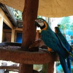 Photo of Langkawi Wildlife Park