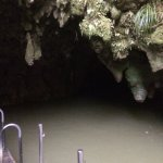 Photo of Waitomo Glowworm Caves