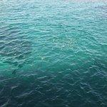 Sea Sky Hakuai Foto