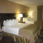 Wingate by Wyndham Charlotte Airport South/ I-77  Tyvola Picture