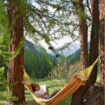 Photo of Camping Arolla