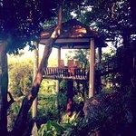 Photo de Tree Tops Sky Dining & Bar