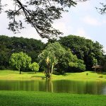 Taiping Lake Garden - Green Greenery