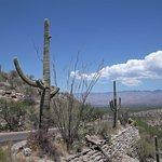 Photo of Tucson Mountain Park