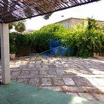 Unloved outside area (poolside shower now overgrown! and pool cleaner broken/unused)