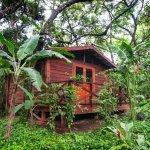 Photo of Mombacho Lodge