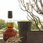 The wee dram whiskey inspired candle-floral and peppery