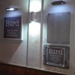 Zdjęcie Bird Garden