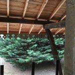 Photo of Domaine des Sequoias