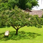 Garten Lisu Lodge