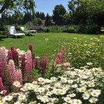 garden: BnB Wonderlandscape, Le Chaumont 4, 2350 Saignelégier