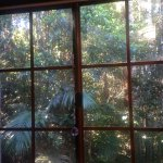 Kitchen Window View, yes right on a Rainforest, magic!