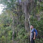 Photo of Parque Ecologico Cao Sentado