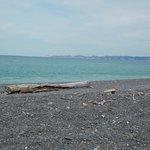 beach is pebble