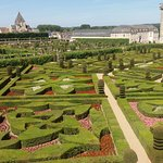 The gardens at Chateau de Villandry