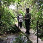 Orchid trail - at Recinto del Pensamiento