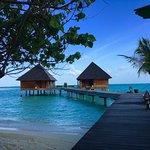 Photo de Gangehi Island Resort