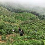 Photo of Sapa Sisters Private Trekking Adventures