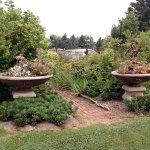 Surreybrooke Gardens