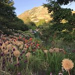 Photo de Red Butte Garden
