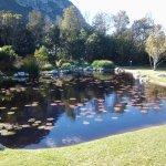 Pond near Red Disa restaurant