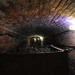 The Elms - The Coal Tunnel