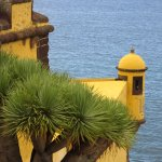 Fort at Funchal