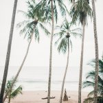 Foto de Tango Mar Beachfront Boutique Hotel & Villas