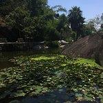 Photo de Xiamen Botanical Garden