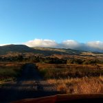 Driving up to the Parker Ranch and Waimea