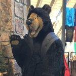 """Say """"Hi"""" to the bear at NOC"""