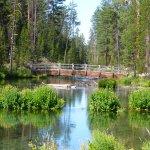 Foto de La Pine State Park