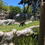 Photo of San Diego Zoo