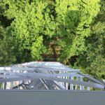 Looking down from top of fire tower.