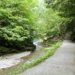 Stony Brook State Park Foto