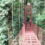 Monteverde Cloud Forest - Hanging Bridge