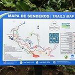 Monteverde Cloud Forest - Trails Map