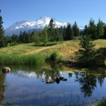 Mount Shasta Resort Foto