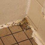 Motel 6 Philadelphia,PA-Brooklawn Picture