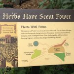 A special section devoted to the many uses of herbs