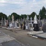Walking amongst Irish historical figures.