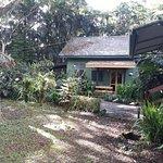 Colo I Suva Rainforest Eco Resort Foto