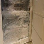 Leaking freezer
