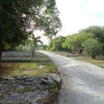 Foto de Coral Gardens