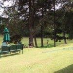 Photo de Nuwara Eliya Golf Club