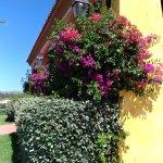 Photo of Hotel & Residence Liscia Eldi