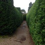 Maze entrance