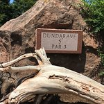 driftwood at the signs on Dundarave