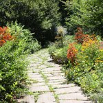 One of the many paths thru the Lilly Gardens